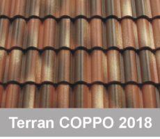 Terran Coppo 2018